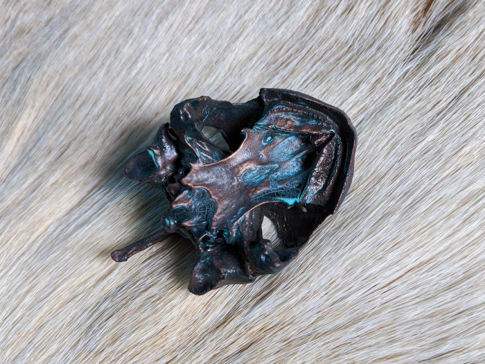 Bronze turtle skull